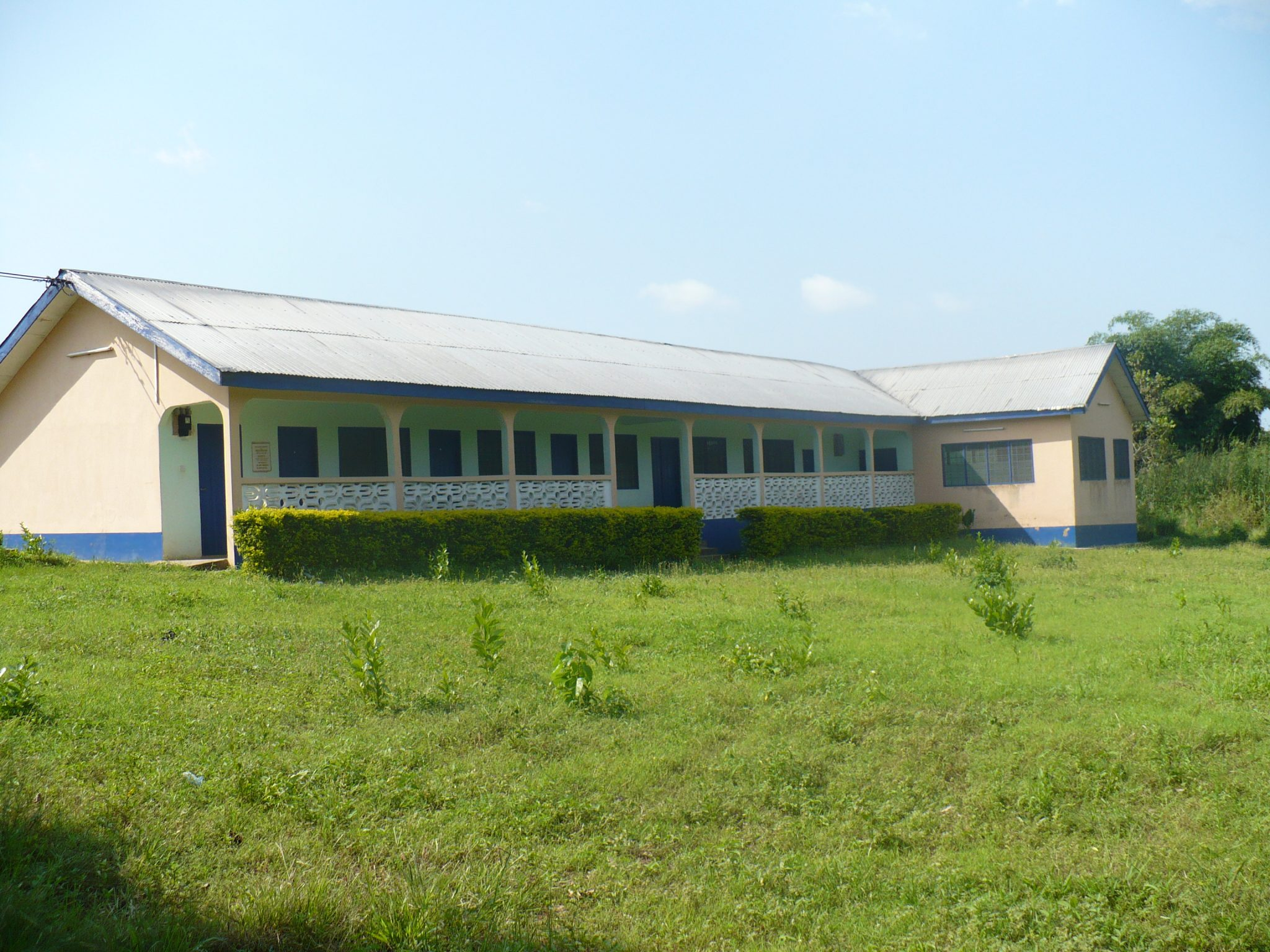The Nkonya Language Project Offices